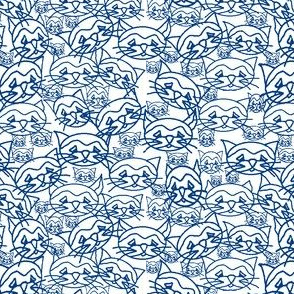 Cats! Lots of blue cats!
