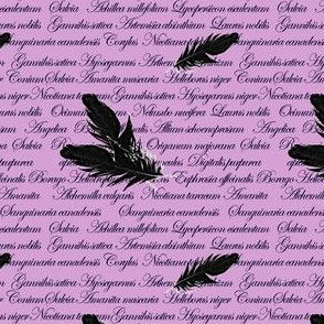 Manuscript with Feathers (Purple)
