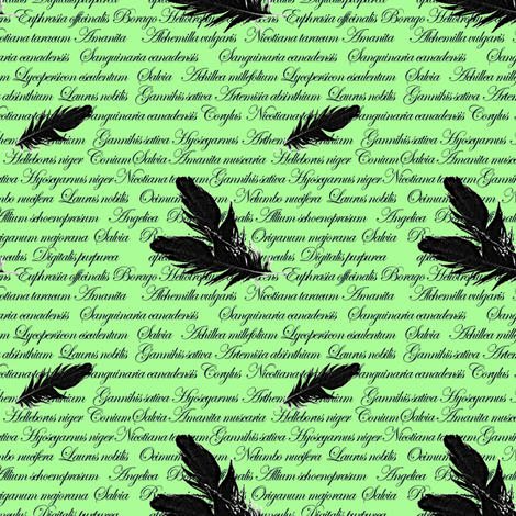 Manuscript with Feathers (Green) fabric by arts_and_herbs on Spoonflower - custom fabric