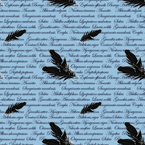 Manuscript with Feathers (Blue) fabric by arts_and_herbs on Spoonflower - custom fabric