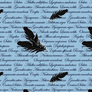 Manuscript with Feathers (Blue)