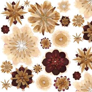 Flower Petal Blooms