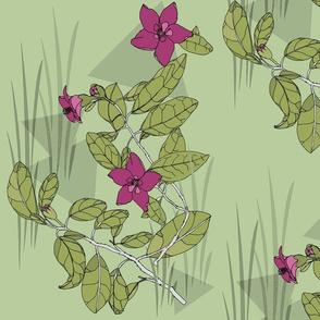 tree lace pink