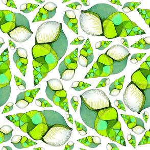 Green shells