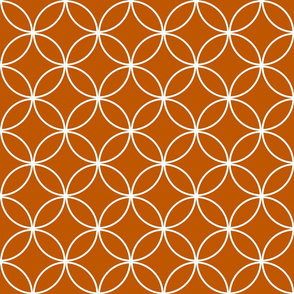 Spiced Pumpkin  and White ~ Circle Lock