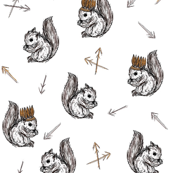 squirrels and feathers