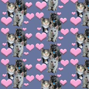 kitty_cat_fabric_design2