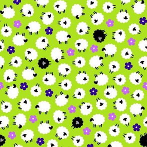 Field of Sheep