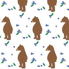 blueberry Bear