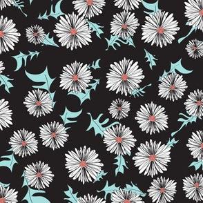 Daisy, daisy - black