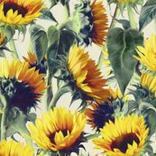 Rrsunflowers_pattern_base_with_texture_shop_thumb