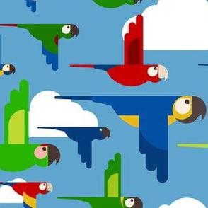 Macaw Skies