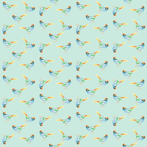 Songbird Blue and Orange on Seafoam