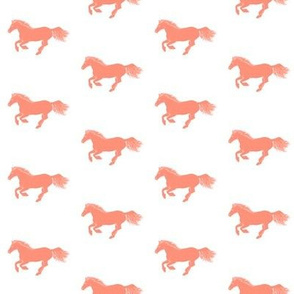 Coral Pony on White