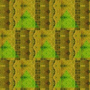 cacti repeat 3