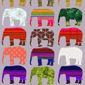 elephant festival grey