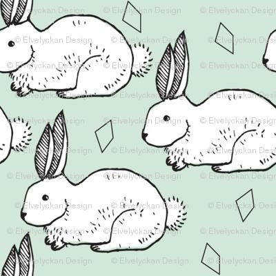 mint rabbit - elvelyckan