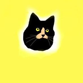 Black Cat Polka Dots