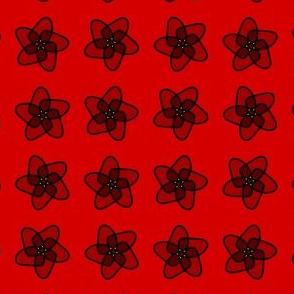 red starryflower