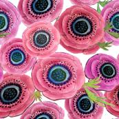 Anemone Exuberance