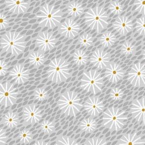 daisies - grey