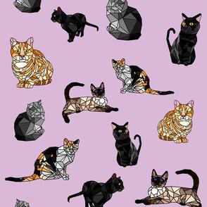 Cats Cubed