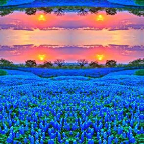 Grape_hyacinth_field-ed mirrored