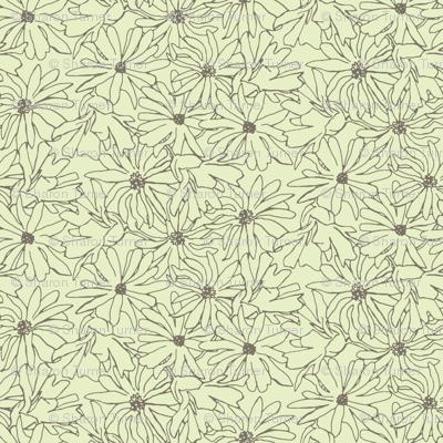 magnolia stellata mocha cream