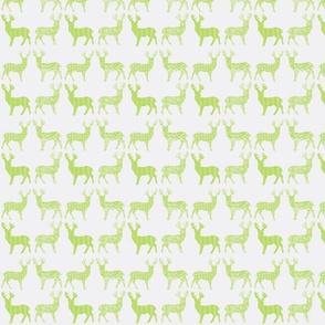 Lime Meadow Deer on White