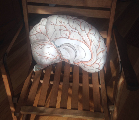 Brain Pillow Side 2