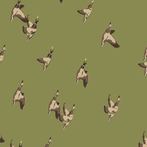 railroaded flying ducks in green