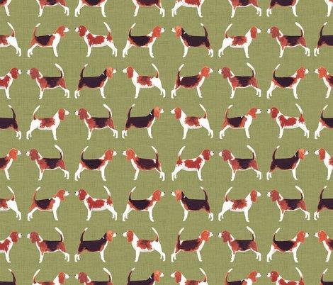 Rrrrbeagle_pattern_2_green_texture_shop_preview