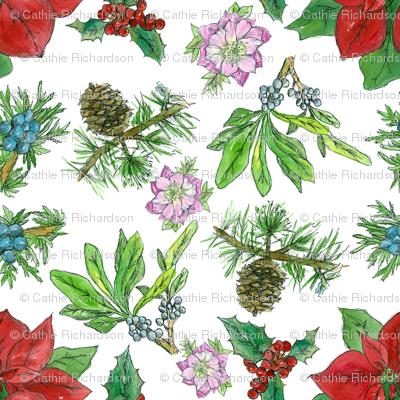 Christmas Botanicals