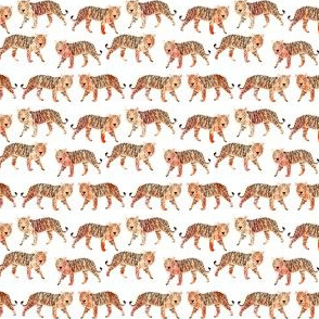 tigers // mini watercolor tigers animals cute painted watercolors