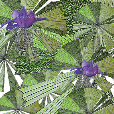 Australica_palm_exotic_flower1_preview