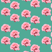 Roses on teal