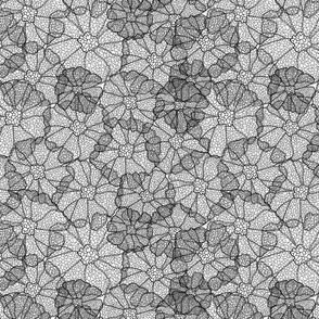 Gray Divide