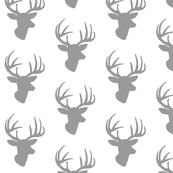 Grey deer on white