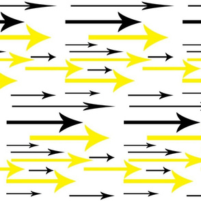 ARRAY OF ARROWS