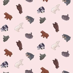 Bears in Pink