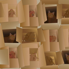 Cubist_Cats_in_Cardboard_Boxes
