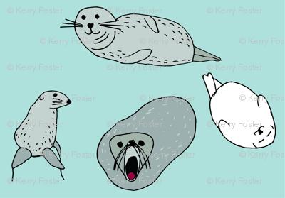 Seals in sea