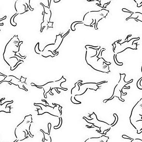 Hepcat-black and white