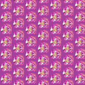 butterfly purple