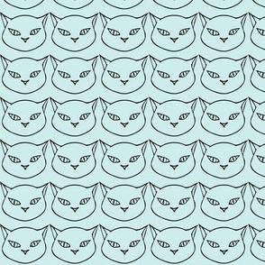 Cats Mint