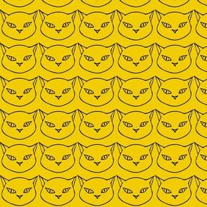 Cats Mustard