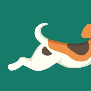Beagle - large