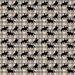 Dressage on light plaid small