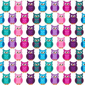 Many_Owls