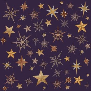 Steampunk Stars - purple